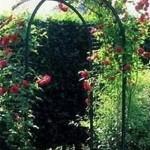Садовая аркаСадовую арку редко где